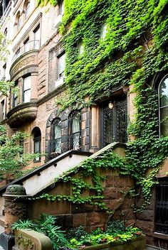 New York City brownstones are amazing.