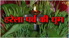 "उत्तराखंड में 'हरेला' महोत्सव 2016 ""Harela"" Festival Celebration Uttarakhand..Himalayannews.com"