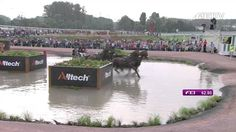 Alltech FEI WEG 2014 - Chester Weber ***THAT WAS THE FIRST TIME I SAW THE HUMAN FACE IN THE FEI HORSEHEAD LOL***