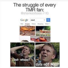 hey guys look i found a newt - Google Search--- hahahahahaahahaha