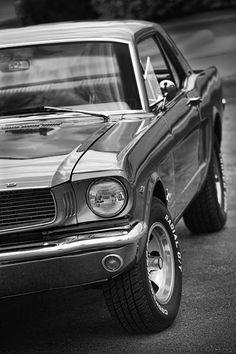 Mustang - by Gordon Dean II