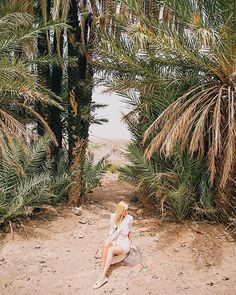 JULIA 🌺 T R A V E L L E R (@chicchoolee) • Instagram-Fotos und -Videos Keep Calling, Hotels, Strand, To Go, Videos, Places, Outdoor Decor, Travel, Instagram