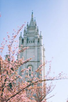 T Barton photography: SLC LDS Temple