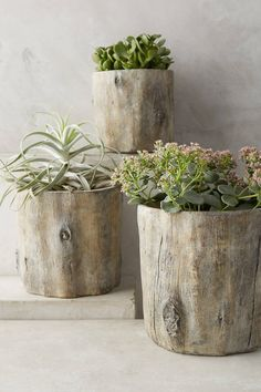 Anthropologie Tree Trunk Planter