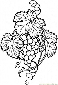 Fall Coloring Pages | ... Pages Grape 9 (Food & Fruits > Grapes) - free printable coloring page
