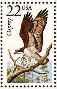 Osprey  1987-06-13