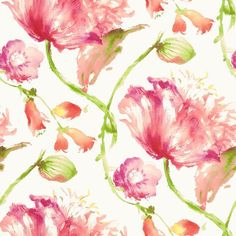 Anna French Zola Tuileries AT34154 Pink Wallpaper