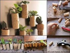 Mini cactus garden, I loves it! would be super cute with small glass vials to see the soil and everything inside