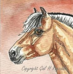 ACEO Norwegian Fjord Horse Pony Original Watercolor & by Carpiss, $9.99