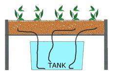 Wicks system hydroponics
