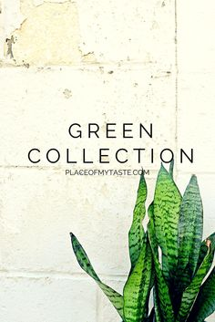 GREEN COLLECTION - Place Of My Taste