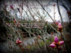 DIGITAL DOWNLOAD  Waking from Wintry Rest  by ArtPeaceCreation, $9.00