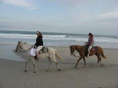 Outer Banks, nc by horseback.  Rode horses on the beach at Ocrakoke...so much fun!