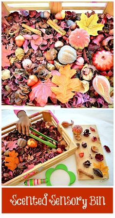 Easy to create SCENTED sensory bin for toddlers and up. So many opportunities for investigation, sensorial exploration and learning. #fallactivities #sensoryactivities
