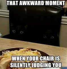 I recognise those eyes!