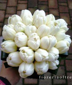 Fioreria Oltre/ Bridal bouquet/ White tulips