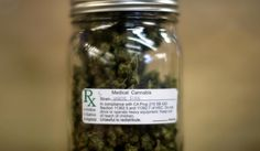 In States With Medical Marijuana, Painkiller Deaths Drop by 25%