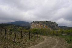red stone - Крым,  виноградник, Crimea, vineyard