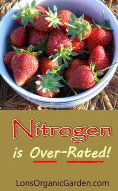 Nitrogen Fertilizer is Over-Rated! You can avoid some common garden problems by not applying nitrogen fertilizers in excess.