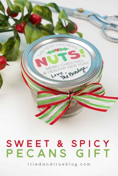 Make an easy Christmas gift with these Air Fryer Sweet Spicy Pecans Recipe, Spicy Nuts, Perfect Christmas Gifts, Simple Christmas, Christmas Time, Easy Gifts, Free Gifts, Christmas Craft Projects, Pecan Recipes