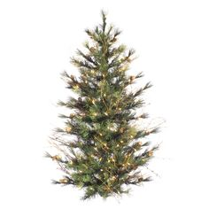 Vickerman Mixed Country Pine Wall Artificial Christmas Tree featuring PVC/Hardneedle tips. This tree is designed to be mounted on wall and does not have a base (branch construction). It has real pine cones and grapevine accents. Size: 3'. Color: clear. Christmas Mix, Christmas Greenery, Christmas Store, Christmas Colors, Christmas Decor, Grapevine Christmas, Christmas Bedroom, Christmas Porch, Christmas Decorations