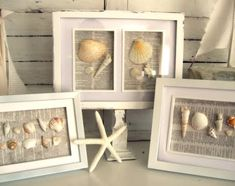 Shadow boxes to display your beach finds