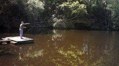 #Naßfliegen und #Nymphen, gute Fangaussichten zwischen Grund und Mittelwasser.  #Fliegenmuster, die unter Wasser gefischt werden, lassen sich in die drei Abteilungen Naßfliegen und Nymphen sowie #Streamer einteilen.  http://www.angelstunde.de/nassfliegen-und-nymphen/