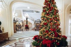 Comparateur de voyages http://www.hotels-live.com : All the Shangri-La Hotel Paris Team wishes you a Merry #Christmas! Photo :  Agence Photo Skiss by shangrilaparis https://www.instagram.com/p/_uAF36pOfM/ #Flickr via https://instagram.com/hotelspaschers via Hotels-live.com https://www.facebook.com/125048940862168/photos/a.1069203666446686.1073741901.125048940862168/1074046312629088/?type=3 #Tumblr #Hotels-live.com