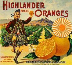Vintage Labels, Vintage Cards, Orange Crate Labels, Vegetable Crates, Vintage Seed Packets, Vintage Travel Posters, Vintage Advertisements, Portraits, Art Prints