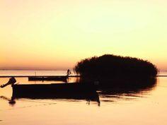 La plimbare pe Lacul Razim - Sarichioi, jud Tulcea   Romania nu inceteaza sa ne surprinda!!