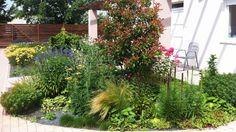 Always flowering perennial bed/ Mindig virágzó évelő ágyás Perennials, Yards, Landscaping, Tropical, Bed, Flowers, Plants, Stream Bed, Yard