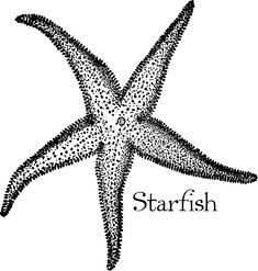 Vintage Beach Art Starfish Drawing with Typography – Click for instant art printable @ Vintage Fangirl