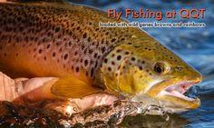 Estancia Quemquemtreu - Fly Fishing & Hunting Lodge