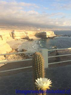 Sector La Portada de Antofagasta