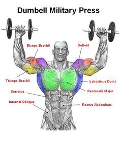 Military press manubri