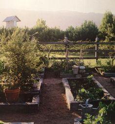 Grow ur own garden.
