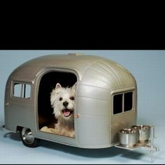 Doggie trailer - I need to have this!  look at the food bowls! <3