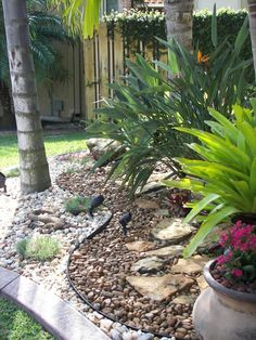 Rock Garden Landscape, great idea, with plants in pots in rocks the dogs might not dig them up...