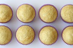 Glorious Treats: Perfect Vanilla Cupcakes {Recipe}