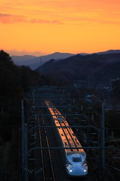 Japanese Shinkansen Bullet Train at Sunset 東海道新幹線   Rui Matsushita