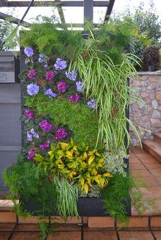 Primera opción Jardín realizado jardín vertical interior barcelona listado especies leaf.box