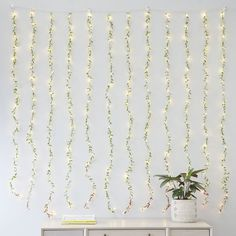 Whether you hang this stylish string of lights on your wall or above a doorway, it adds a cascading glow that brightens up any space. Pottery Barn Teen Curtain Leaf Waterfall String Light Led Shop Lights, Led Wall Lights, String Lights, Teen Curtains, Bedroom Lighting, Bedroom Sconces, Sconce Lighting, Emily And Meritt, Pottery Barn Teen