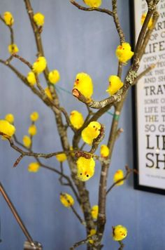 Little Yellow Chicks Hugging The Tree