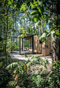 James Mennekens (CEO Nutchel): 'We zijn géén vakantiepark' Treehouse Cabins, Country Modern Home, Farm Stay, Garden Living, Beautiful Hotels, Vacation Trips, Future House, Tiny House, Lodges