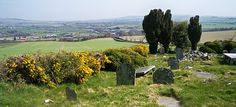 Looking down at the bridge at Clohamon and across the Slaney Valley from the graveyard in Kilmyshall, County Wexford (Photograph: Patrick Comerford, 2010)
