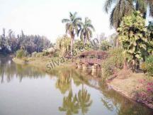Dadra Garden in #Silvassa. http://www.resortsinsilvassa.com/silvassa-photogallery