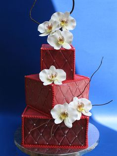 Google Image Result for http://lib.store.yahoo.net/lib/yhst-5418161598049/moth-orchid-cake