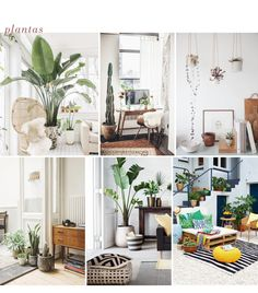 10 Tendencias de Decoración 2016/17 - The Creative Jungle Blog