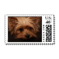 Cute Yorkshire Terrier Stamps #yorkie