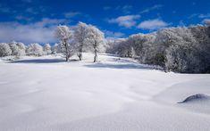 Download wallpapers winter, snow, field, blue sky, winter landscape